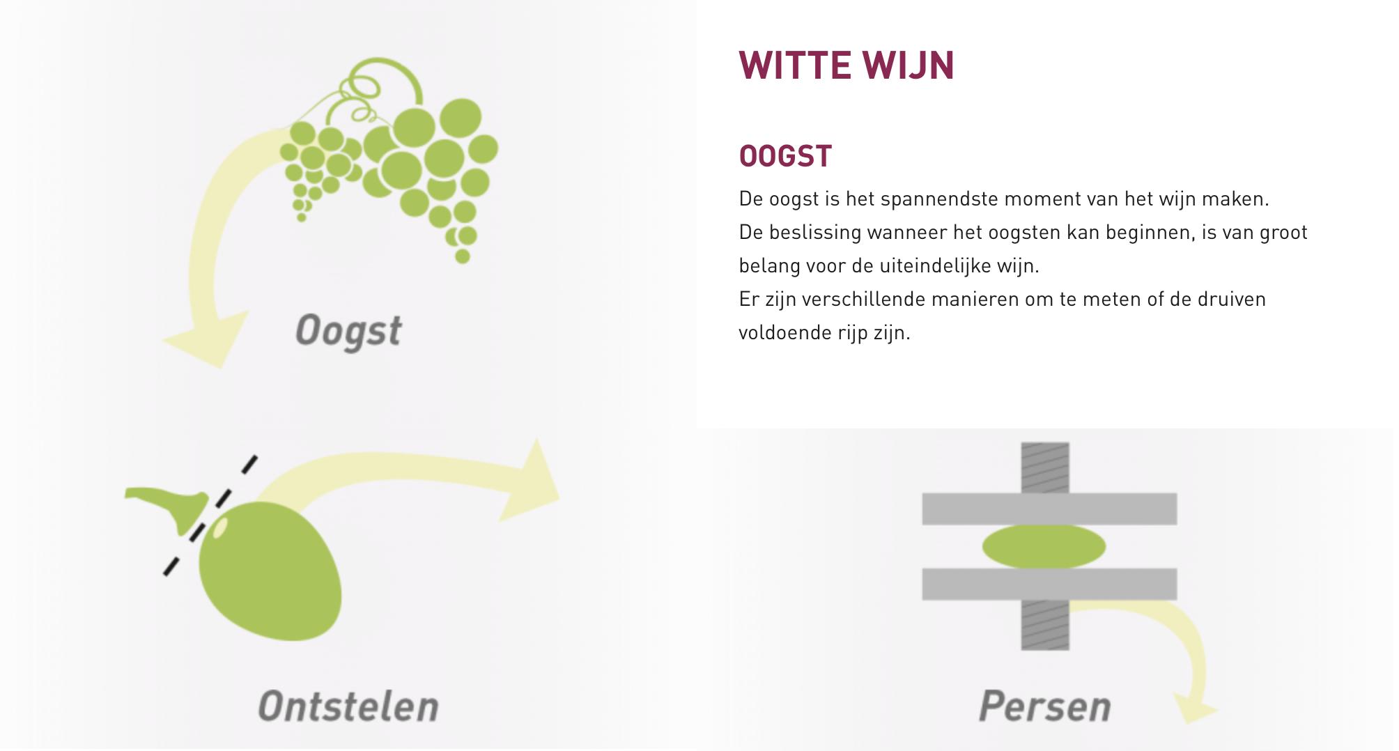 Hoe wordt witte wijn gemaakt?