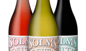 Solms Delta Wine Estate Shiraz 'Langarm'